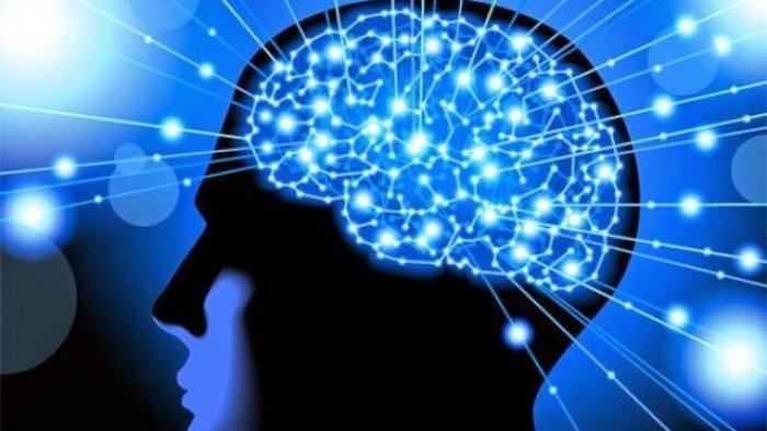 Kesehatan dan Memori Otak
